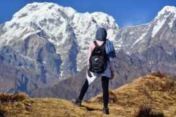 変形性股関節症の再生医療